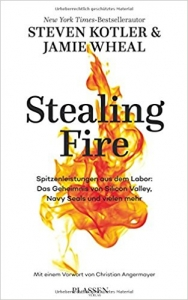 5Steven Kotler/Jamie Wheal: Stealing Fire deutsch