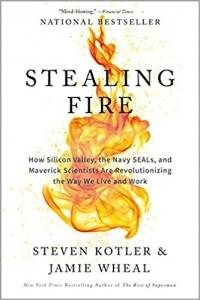Steven Kotler/Jamie Wheal: Stealing Fire